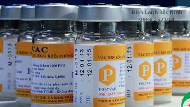 lắp đặt kho lạnh bảo quản vắc xin